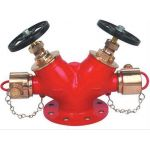 Generic F-GMDHV-01 Gun Metal Double Controlled Hydrant Valve, Nominal Size 63mm, Angle , NB Inlet 100mm