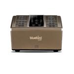 Bluebird Naturo2 Dual Core Air Purifier, Air Flow 80CFM